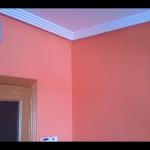 Salon Color Naranja 4